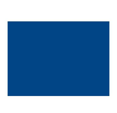 LYNX Robust Foundation compressed