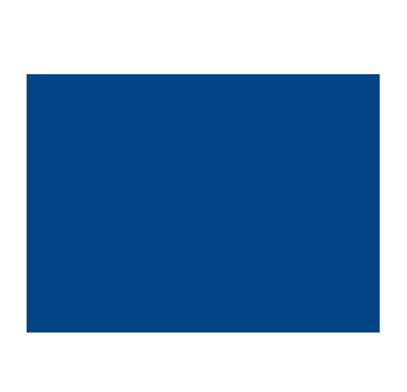 LYNX Robust Foundation